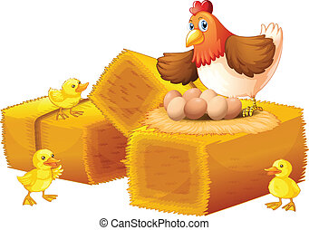 A hen with her eggs and chicks