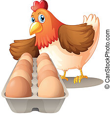 A hen with her eggs in a tray