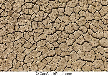 Cracked dry desert during drought