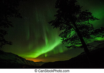 A high resolution image of Northern Lights in Sweden