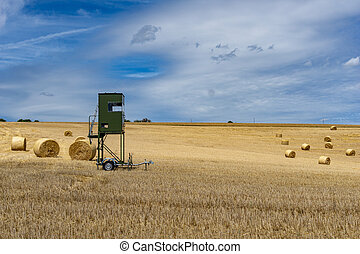 high seat for hunting trailer parked i na golden wheat field...
