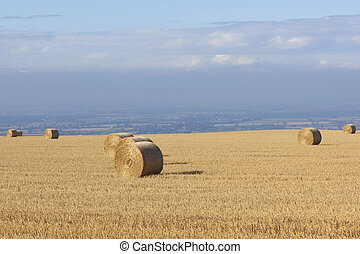 a hillside stubble field in autumn with round bales of straw under a blue cloudy sky
