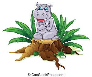 A hippopotamus sitting above the wood