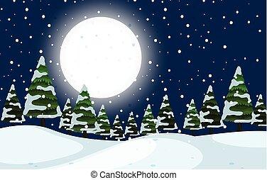 a, hiver, extérieur, scène nuit
