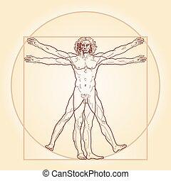 a, homem vitruvian, (homo, vitruviano)