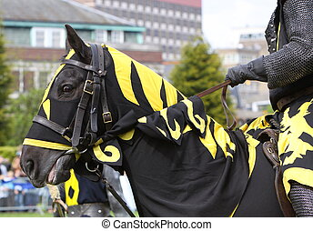 a horse dressed for jousting