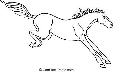 A horse landing after a jump - vector linear picture for coloring or pictogram. Horse after the jump. Outline. Hand drawing.