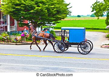 A horse pulling a cart across a beautiful Saskatchewan landscape