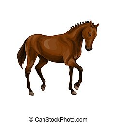 A horse stands, fawn, vector illustration in a realistic...