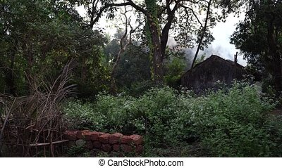 A house burns in the forest, fire. A cottage is burning in the countryside