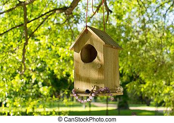 a house for birds summer