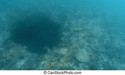 A huge sinkhole underwater