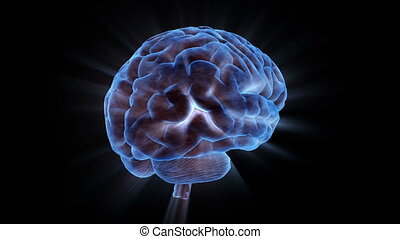 A Human Brain Electrically Charged With Thought