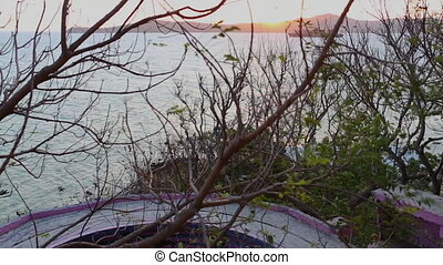A hut in Papua new guinea - Low angle shot through shrubs of...