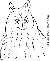 a illustration of a owl