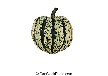 Isolated carnival squash on white - A Isolated carnival...