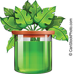 A jar with a green plant