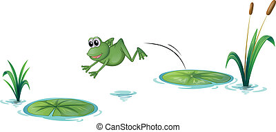 A jumping frog - Illustration of a jumping frog on a white...