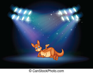 A kangaroo at the stage with spotlights