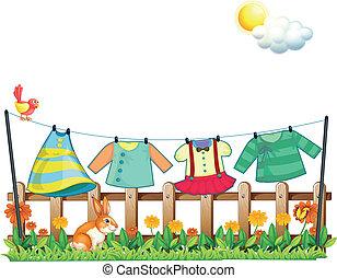 a, kanin, nedanför, den, upphängning kläder