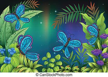 a, kleingarten, mit, viele, vlinders