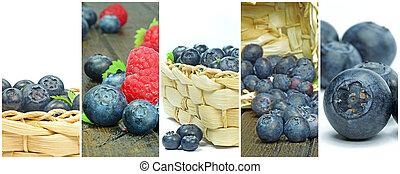 a, kollektion, av, olika, blåbär, avbildar, in, a, inramat, montage