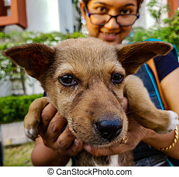 a lady holding an indian street puppy facing camera showing animal love
