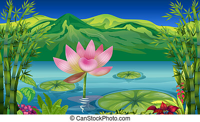 A lake and a beautiful landscape