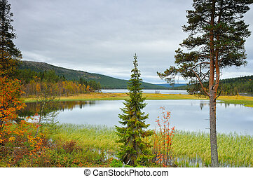 A lake in Sweden in autumn.