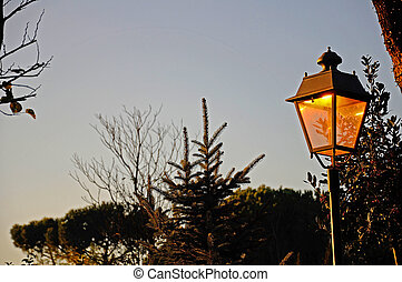 a lamp in the evening