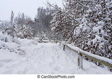 A landscape in winter.