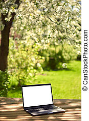 A laptop with an empty screen stands on a wooden table in the courtyard of a beautiful home garden, in Sunny weather.