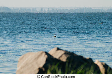A large area of water, the rock is not in focus,
