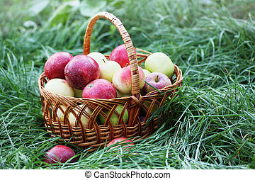 a large basket of apples