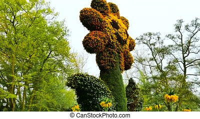 A large flower made of flowers. The camera moves back on the slider. Color correction.