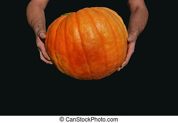 A large orange ripe pumpkin, which is held by a man