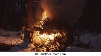 A large pile of brush and debris on fire in a forest - ...