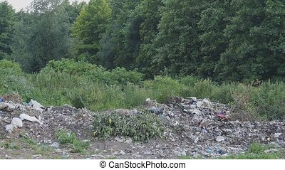a large pile of garbage in the woods
