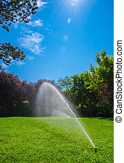 a lawn sprinkler irrigating the lawn in summer