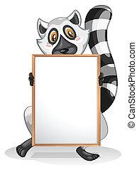 A lemur holding an empty whiteboard