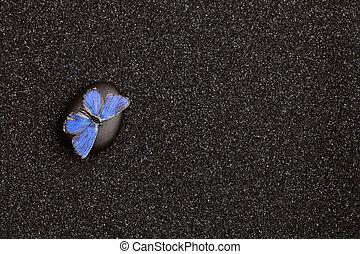 A light blue butterfly in a zen garden with  black sand