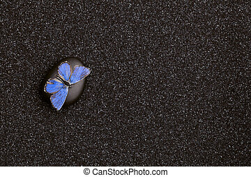 A light blue butterfly in a zen garden with  black sand