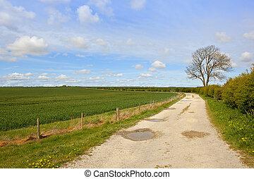 limestone farm track - a limestone farm track with a wheat ...