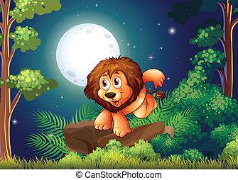 a, lion, à, les, forêt
