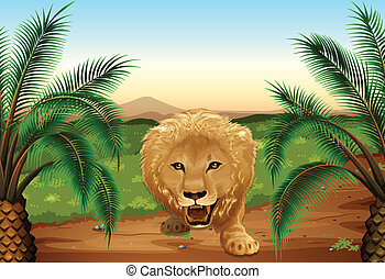 A lion at the jungle