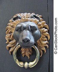A Lion Door Knocker