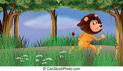 A lion walking in the forest alone