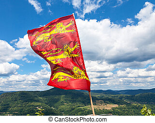 Lionheart flag