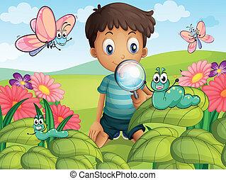 A little boy in the garden - Illustration of a litte boy...