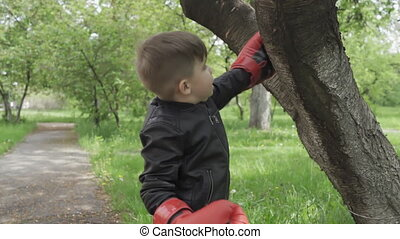 A little boy is boxing a tree, beating with his fists in big gloves and standing outside in a park or garden. Prores 422.